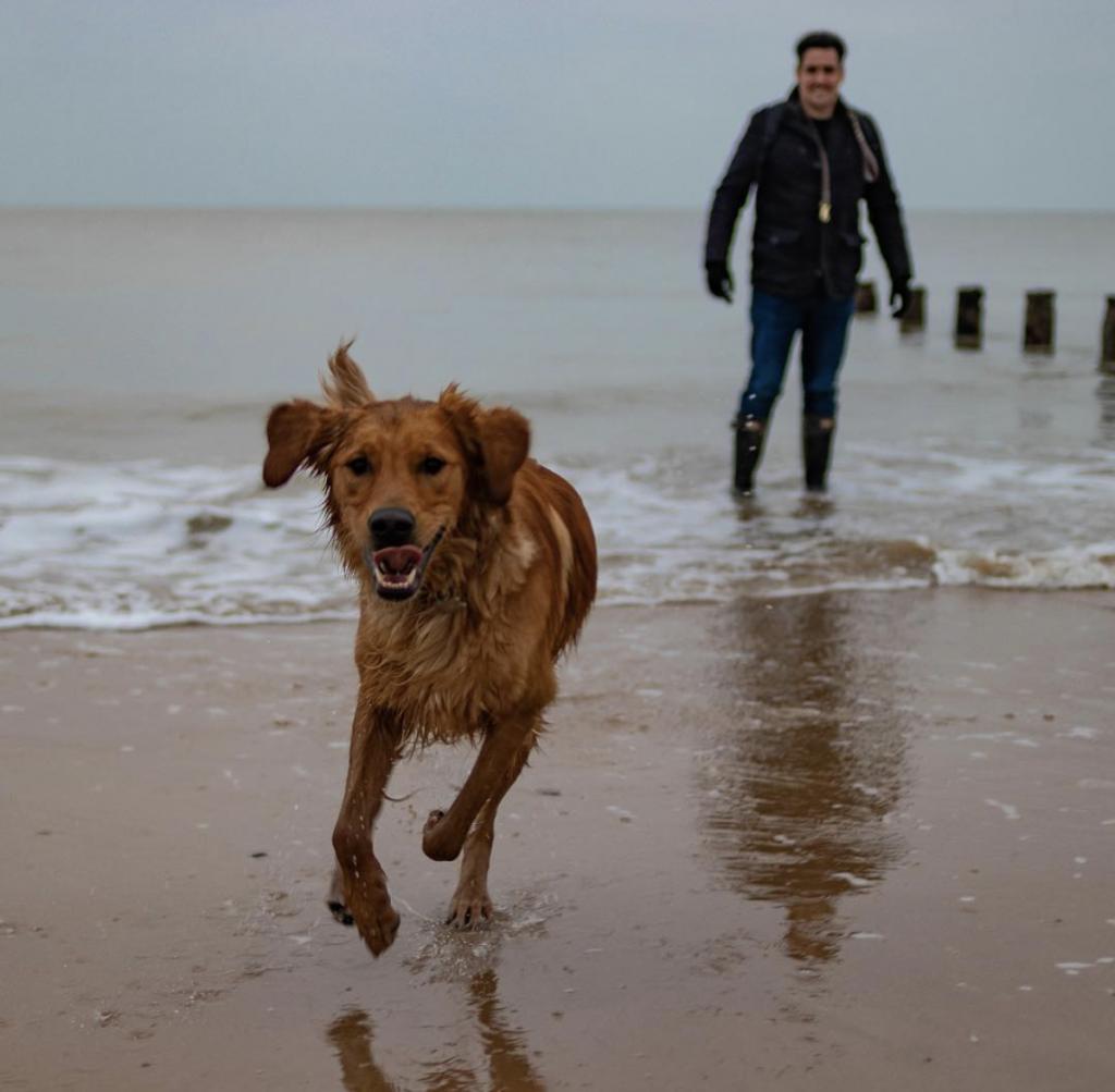 Frinton-on-sea dog friendly beach